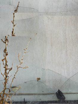 Mostar-Fenster_Motif-1_Part-5-M